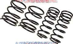 RACING GEAR LOW FORM SUSPENSION SS034A