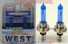 Akuhiru Waist Halogen valve WEST valve WE-H4U Super white 5000 K 14.3Φ