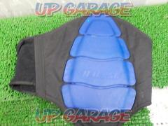 DAINESE Back protector Black x blue