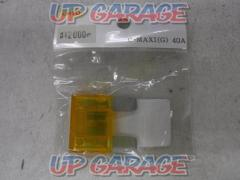 Unknown Manufacturer Fuse \\ 299 (40A)