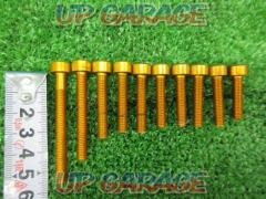 DURA-BOLT (Dura volts) M6 cap bolt Gold Anodized 10 piece set